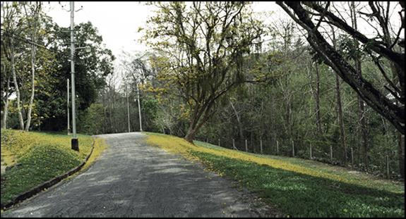 plaisance hill 2016